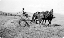 VIRTUAL: History of Agriculture in the Yampa Valley